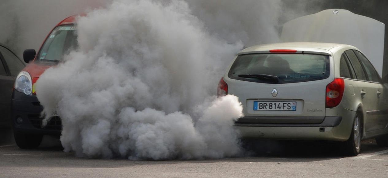 survey-ban-diesel-cars.jpg